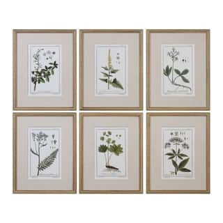 Uttermost Green Floral Botanical Study Prints (Set of 6)