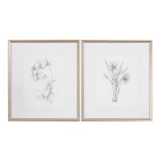 Uttermost Botanical Sketches Framed Prints (Set of 2)