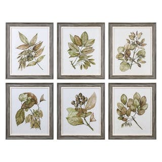 Uttermost Seedlings Framed Prints (Set of 6)