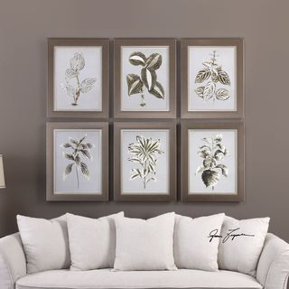 Uttermost Verigated Plant Prints (Set of 6)