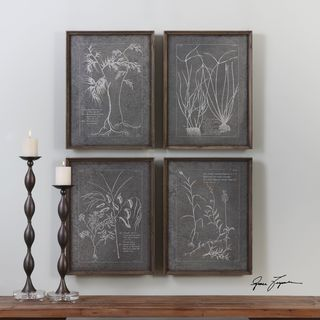Uttermost Root Study Print Art (Set of 4)
