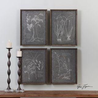 Uttermost Root Study Print Art (Set of 4)
