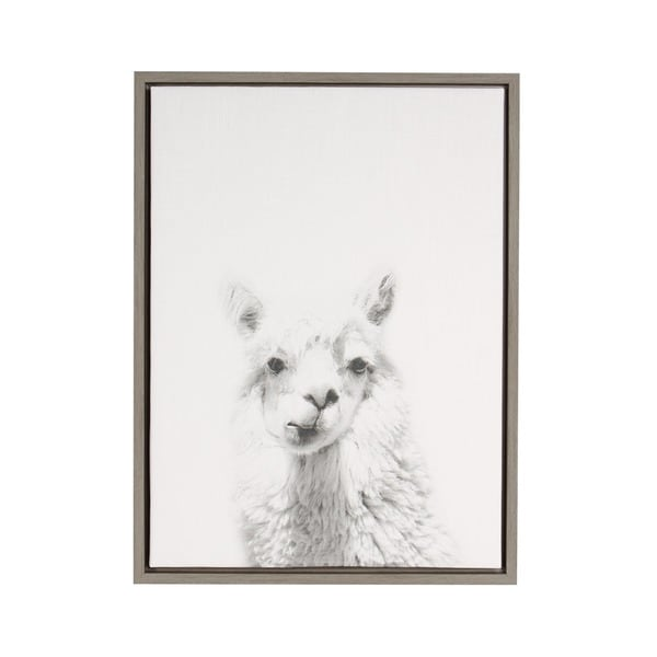 DesignOvation Simon Te 'Alpaca Portrait' Black/White Framed Canvas Wall Art
