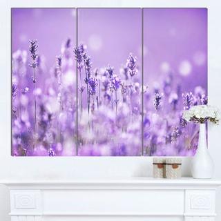 Designart 'Stunning Purple Lavender Field' Landscape Artwork Canvas Print