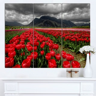 Designart 'Rows of Bright Ruby Red Tulips' Landscape Wall Art Print Canvas