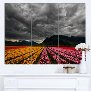 Designart 'Parallel Rows of Colorful Tulips' Landscape Wall Art Print Canvas