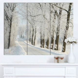 Designart 'Winter Rural Road Among Frosted Trees' Modern Forest Canvas Wall Artwork