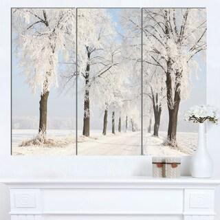 Designart 'Winter Lane on Sunny Morning' Modern Forest Canvas Wall Artwork