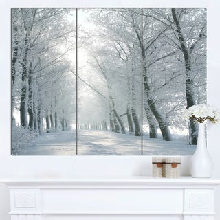 Designart 'Winter Road Backlit my Morning Sun' Modern Forest Canvas Wall Artwork