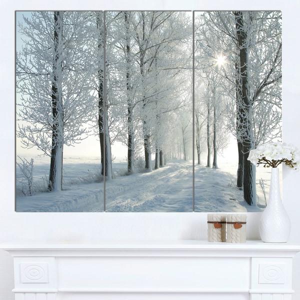 Designart 'Winter Trees Backlit by Morning Sun' Large Forest Artwork Canvas