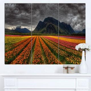 Designart 'Beautiful Colored Tulips Panorama' Landscape Wall Art Print Canvas