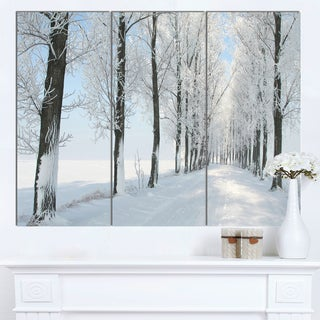 Designart 'Beautiful Winter Forest Lane Photo' Large Forest Artwork Canvas
