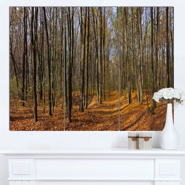 Designart 'Dense Fall Forest Panorama' Modern Forest Canvas Wall Artwork