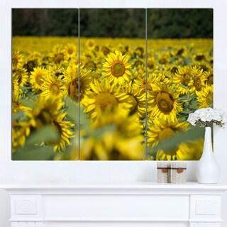Designart 'Bright Yellow Sunflowers Field' Modern Floral Wall Artwork