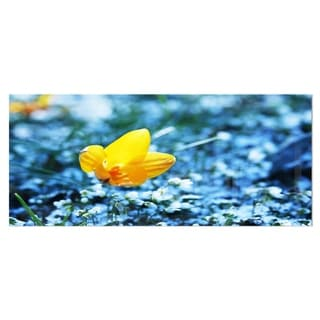 Designart 'Beautiful Yellow Flower on Blue' Floral Aluminium Art Print