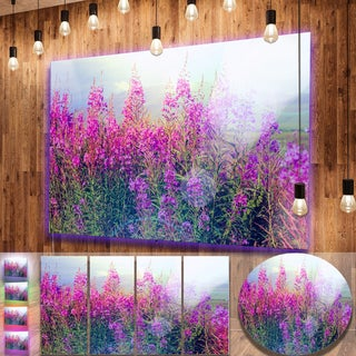 Designart 'Blooming Purple Flowers in Meadow' Large Flower Metal Wall Art