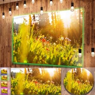 Designart 'Green Meadow with Summer Flowers' Large Flower Metal Wall Art