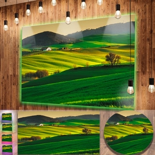 Designart 'Trees and Farmland Near Volterra' Extra Large Landscape Aluminium Art Print