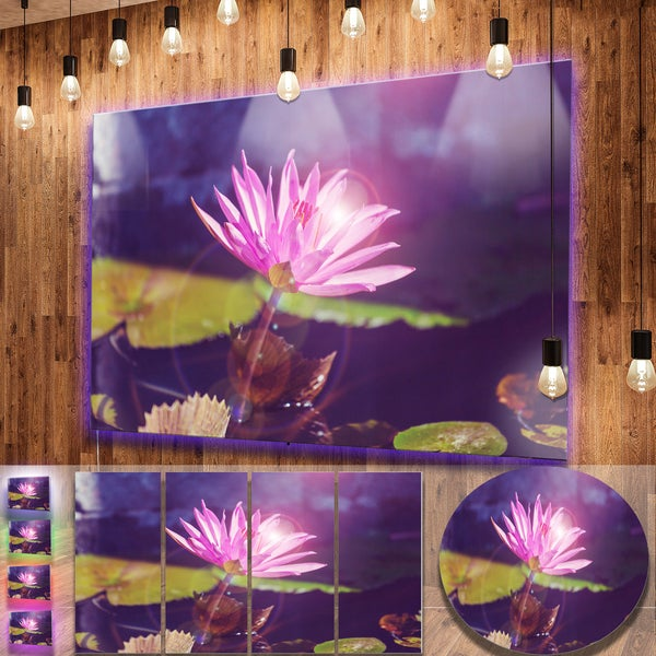 Shop Designart Pink Lotus Flower On Blue Background Contemporary