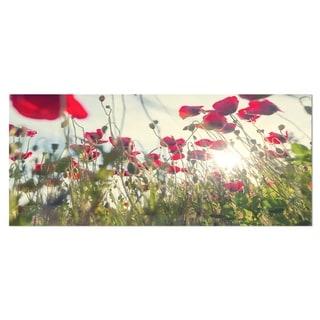 Designart 'Poppy Flowers on Summer Meadow' Floral Metal Wall Panel