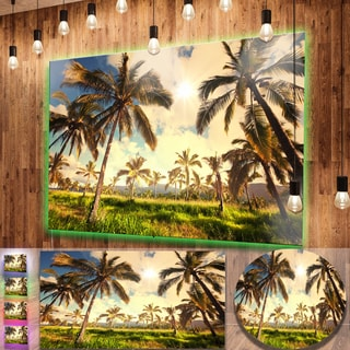 Designart 'Beautiful Palm Plantation in Hawaii' African Landscape Metal Wall Art