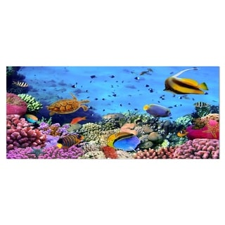Designart 'Coral Colony on Reef Egypt' Oversized Animal Metal Wall Art