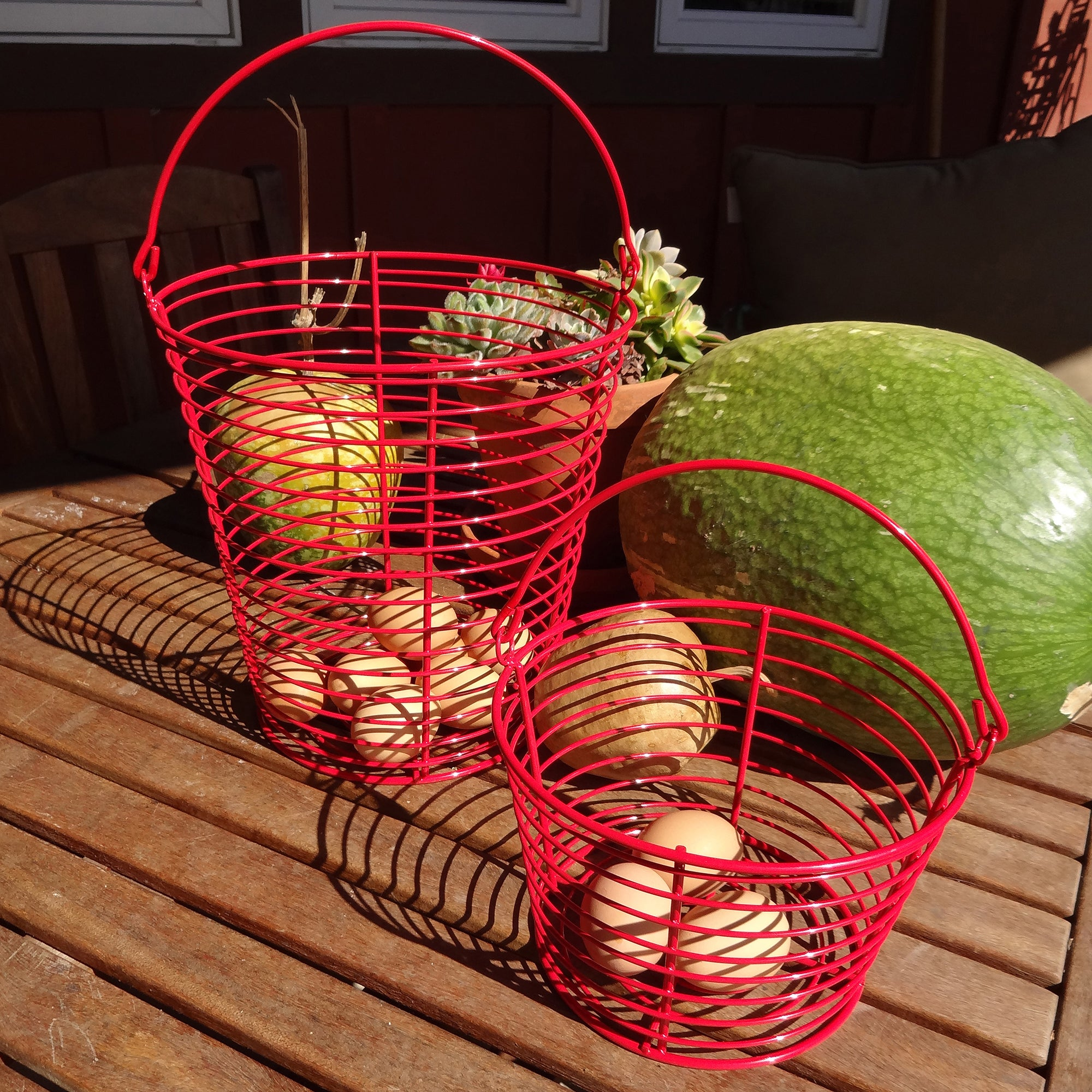 Precision Pet Chicken Egg Collection Basket (RED)