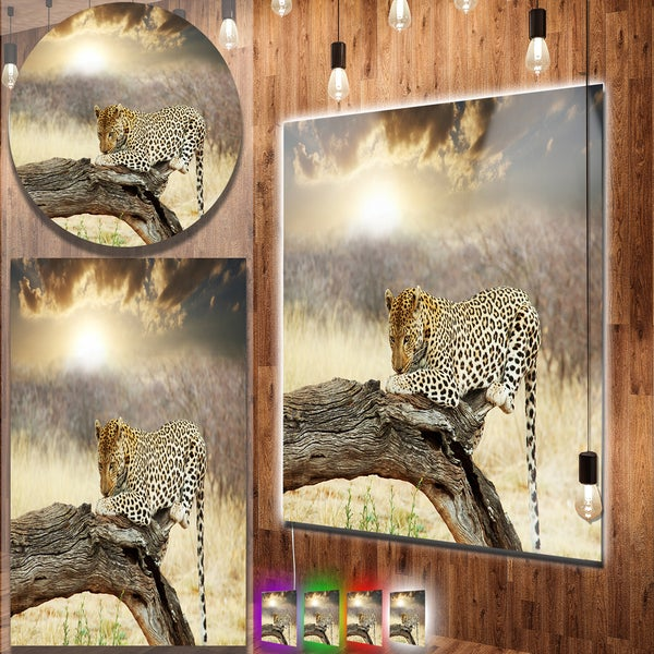 Designart X27 Leopard Relaxing On Tree African Animals Metal Wall