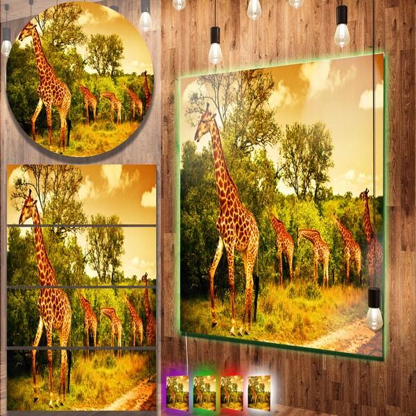 Designart \'South African Giraffes\' African Metal Wall Art Print ...