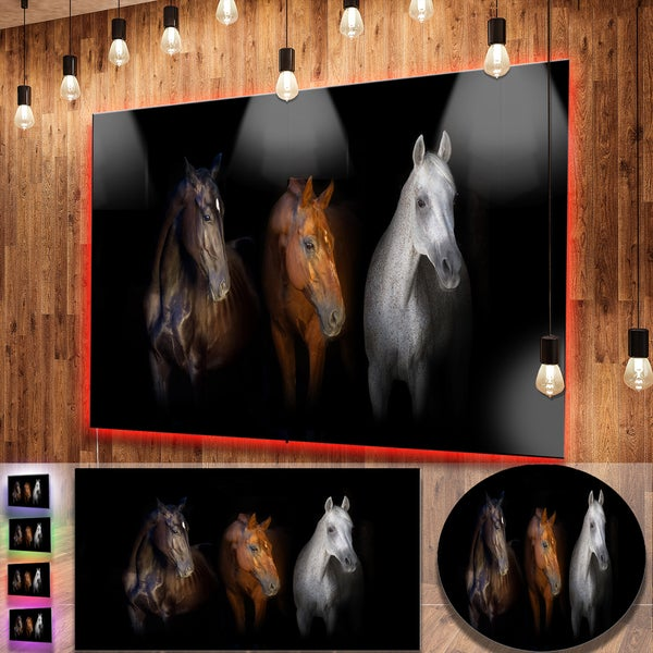 Shop Designart \'Black Red and White Horses\' Large Animal Metal Wall ...