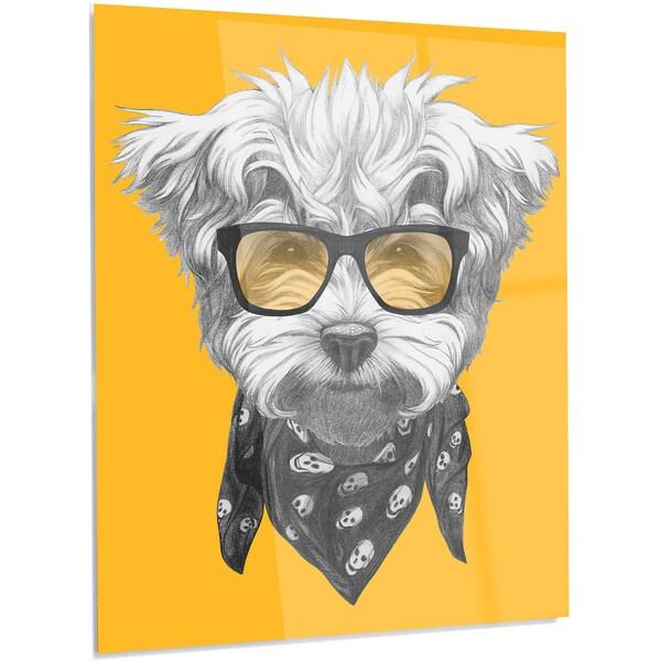 Designart \'Maltese Poodle with Sunglasses\' Modern Animal Metal Wall ...