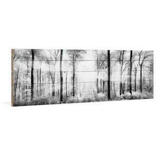 Parvez Taj - 'White Light Forest' Painting Print on Reclaimed Wood