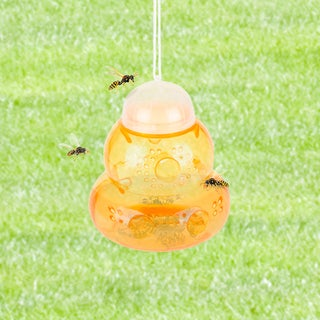 Insect Trap - Wasp, Bee, Yellow Jacket Catcher – Eco-Friendly Reusable Hanging or Tabletop Outdoor Attractant by Pure Garden