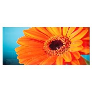 Designart 'Orange Daisy Gerbera Flower Close-up' Flowers Metal Wall Art