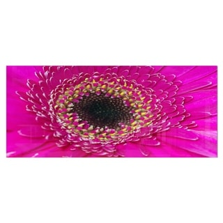 Designart 'Center of Gerbera Flower Close-up' Flowers Metal Wall Art