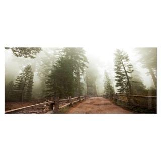 Designart 'Foggy Sequoya National Park' Oversized Landscape Photography on Aluminium