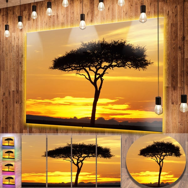 Shop Designart \'Beautiful Sunset Through Acacia Tree\' Extra Large ...