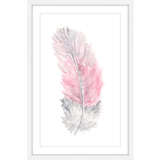Marmont Hill - 'Pink Feather' by Thimble Sparrow Framed Painting Print - Multi