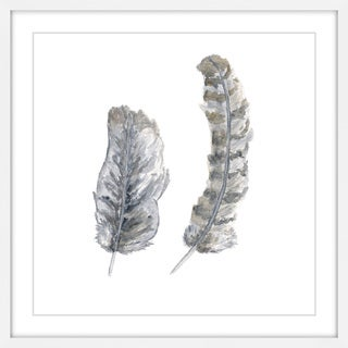 Marmont Hill - 'Brown-Grey Feathers' by Thimble Sparrow Framed Painting Print