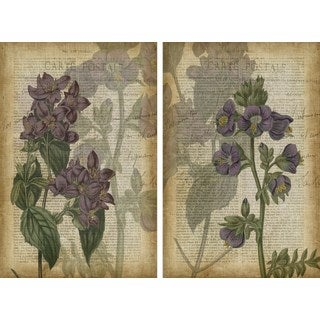 Floral Shadows Diptych