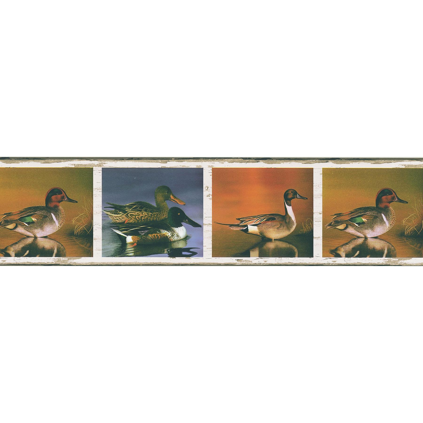 Brewster Multicolor Vinyl Duck Border (Hunter White Duck ...