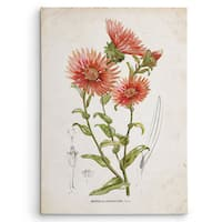 Wexford Home 'Botanical I' Multicolored Canvas Wall Art