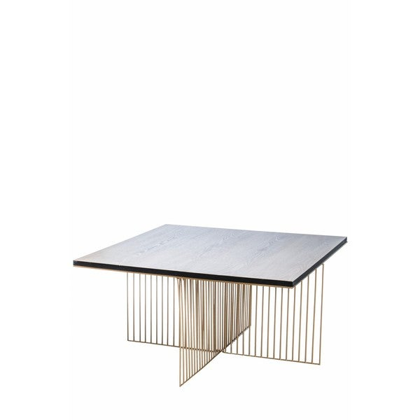 Gold Outdoor Coffee Table: Shop Calvin Grey And Gold Wood Coffee Table