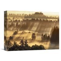 Global Gallery Frank Krahmer 'Fog impression at Sindelbachfilz, Bavaria, Germany' Stretched Canvas Artwork