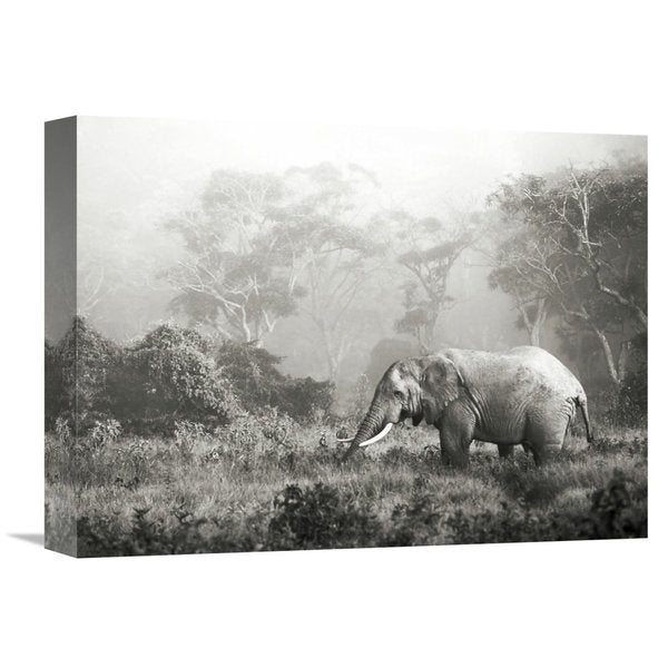 Global Gallery Frank Krahmer 'African elephant, Ngorongoro Crater, Tanzania' Stretched Canvas Artwork