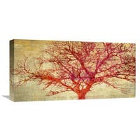 Global Gallery Alessio Aprile �Coral Tree� Stretched Canvas Artwork