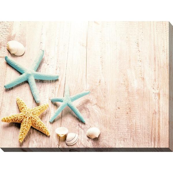 """Starfish Tripod"" Giclee Print Canvas Wall Art"