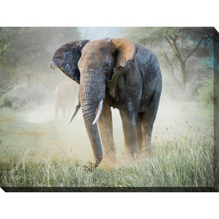 """Elephant"" Giclee Print Canvas Wall Art"