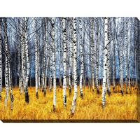 """Birch Trees 2"" Giclee Print Canvas Wall Art"