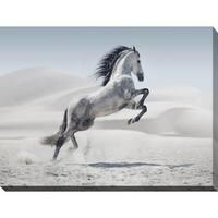 """The Winter Stallion"" Giclee Print Canvas Wall Art"